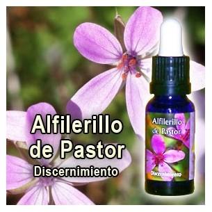 ALFILERILLO DE PASTOR 15 cc. ESENCIAS TRIUNIDAD