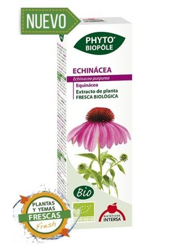 phyto biopole echinacea intersa