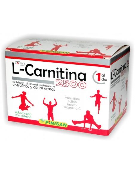 L-CARNITINA 2500 6 viales PINISAN