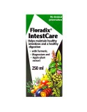 INTESTCARE FÓRMULA HERBAL 250 ml. SALUS