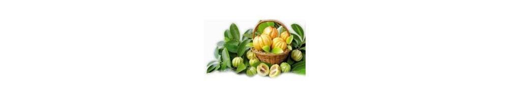 ▷ Garcinia ~ Cambogia ~ Quemagrasa ✅